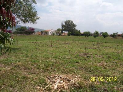 Vendo Terreno Ejidal 2 Hect , Fte A Carr La Calerilla,tlaq