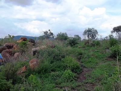 Terrenos Con Vista Panomámica.
