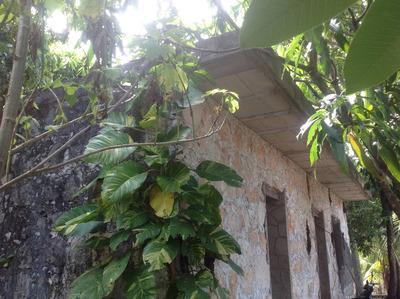 Rancho De 16 Hectareas A Solo 20 Km.de Cancun