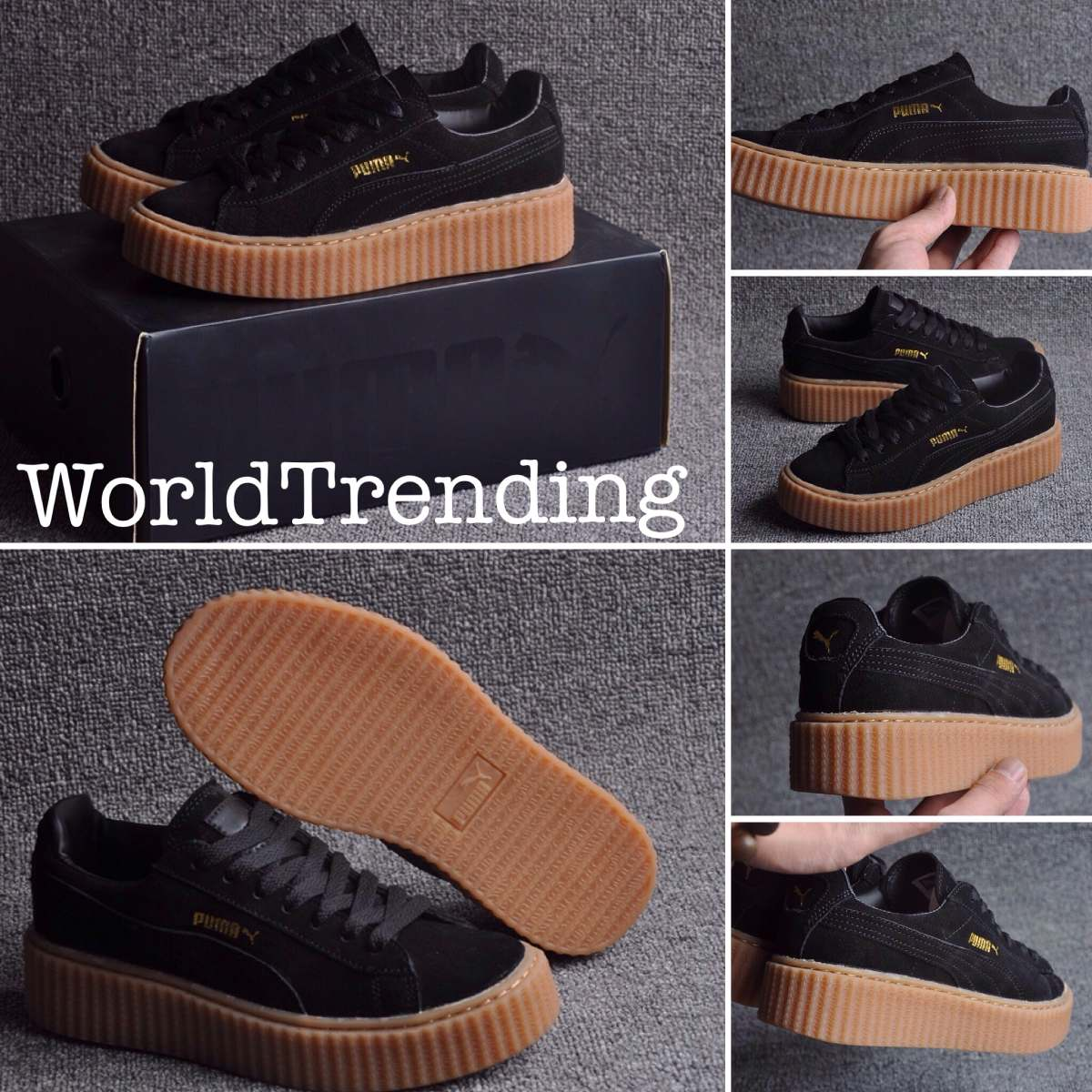 puma creeper mexico